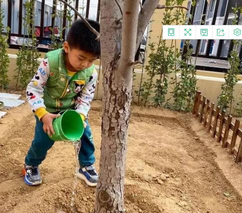 与绿色同行,与环保相约幼儿园环保活动!(图1)
